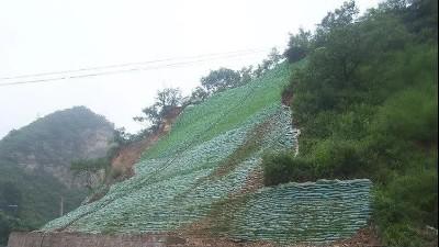 生态袋——环境保护、生态绿化、水土保持三位一体的生态护坡系统