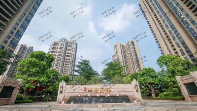 广东珠光御景壹号小区绿植养护案例