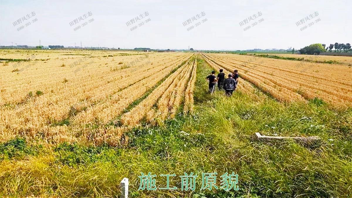 三水侨鑫生态园综合体项目