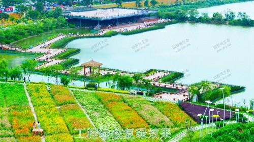 福建福州景区花海工程