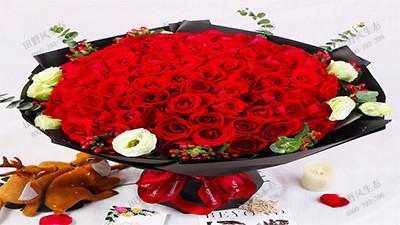 中式玫瑰花束