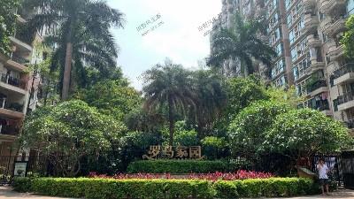 广州罗马家园小区绿植养护案例