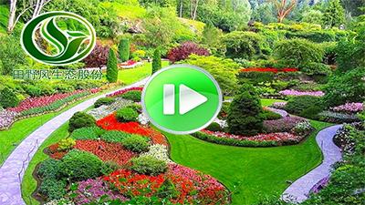 园林绿化施工视频