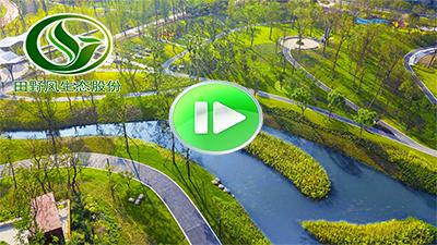 市政园林绿化视频
