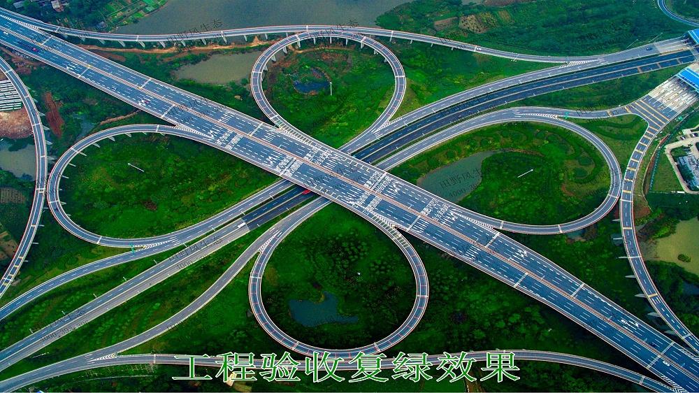 武深高速广东段公路边坡修复工程