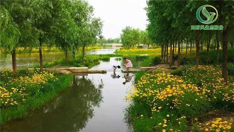 园林绿化,景观绿化