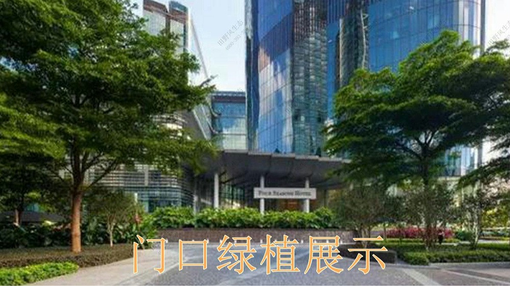 广州国际金融中心室内花卉租赁案例