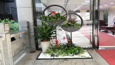广州创境汇盈科智谷植物租摆