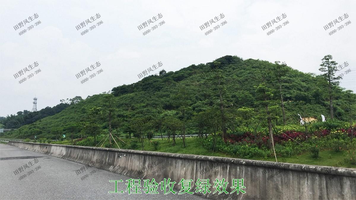 武深高速广东段高速公路边坡喷草