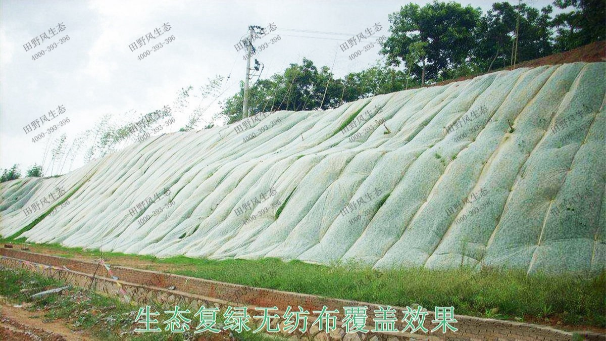 福建三明市工业园边坡生态修复工程