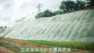 福建三明市工业园厂区边坡喷草