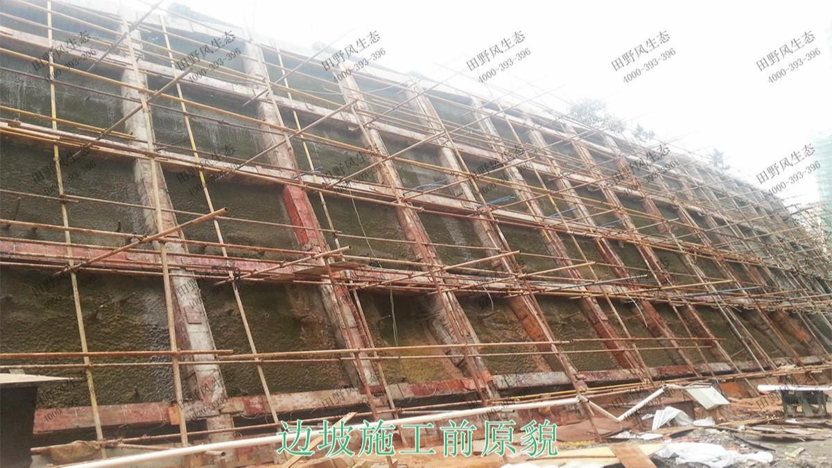 广东清远美林基业地产边坡复绿