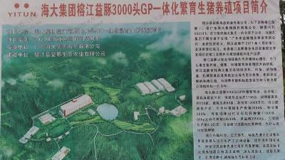 海大集团榕江益豚生态边坡复绿工程圆满竣工!