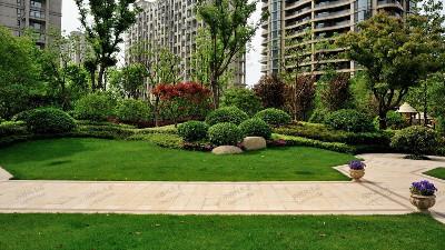 小区绿化养护全年工作安排方案