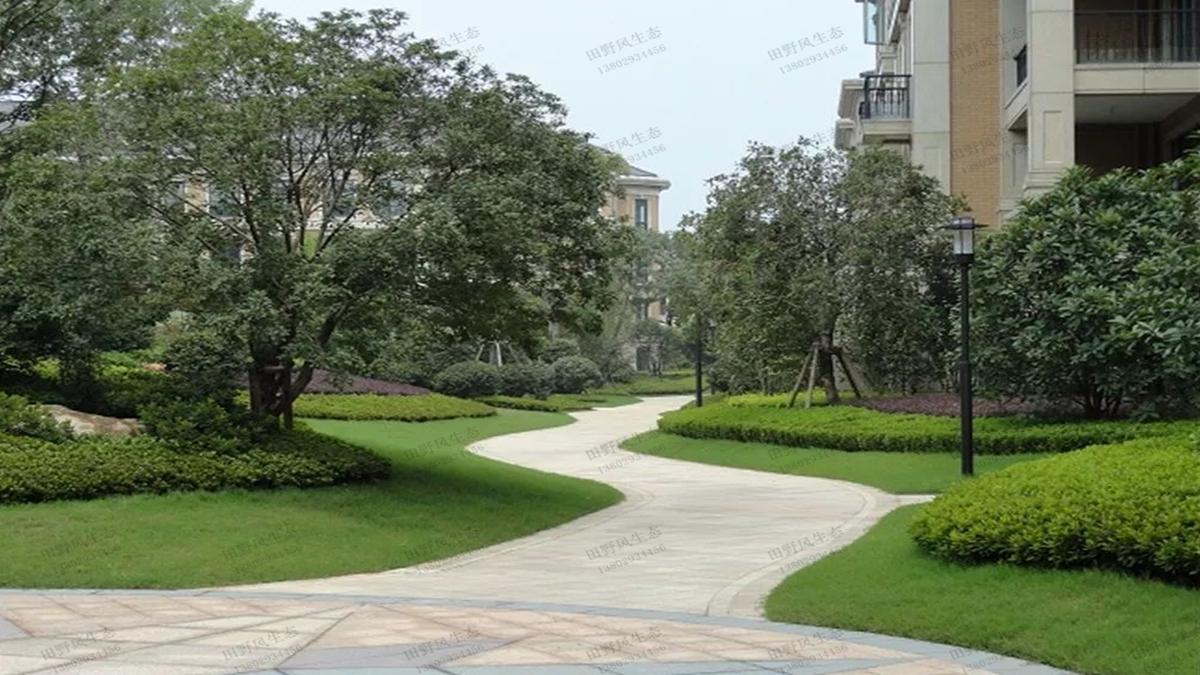 小区绿化养护