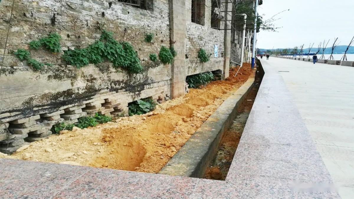 紫金县秋香江河道河堤边坡绿化工程