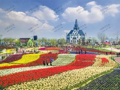 景观花卉种植工程施工方案