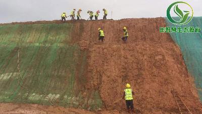 高州海源农业公司边坡植草复绿工程正式竣工启动!