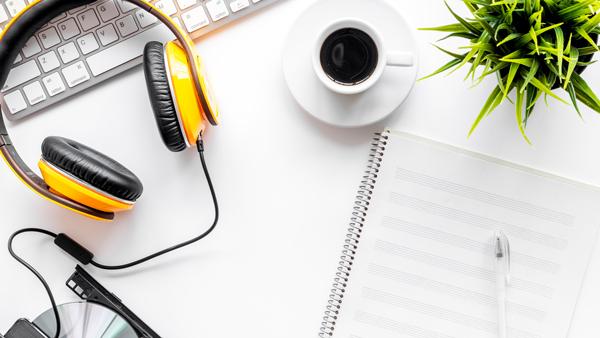 田野风大讲堂:办公室租摆花卉绿植需要注意什么?