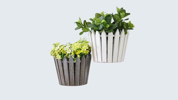 办公室适合养什么植物?且听田野风娓娓道来