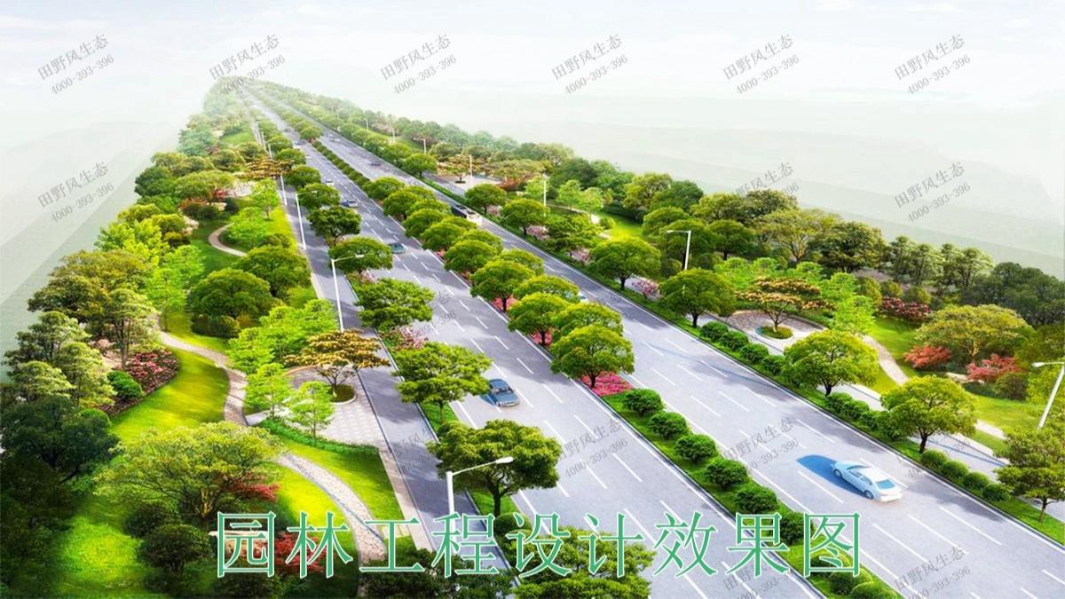 广东河源紫金省道绿化美化市政工程