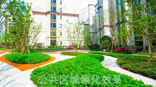广东湛江保利地产园林景观工程
