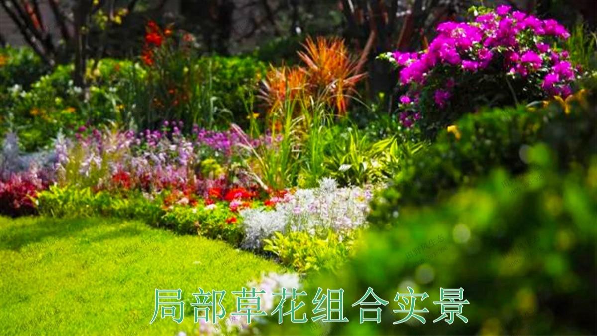 南昌龙湖地产园林景观工程