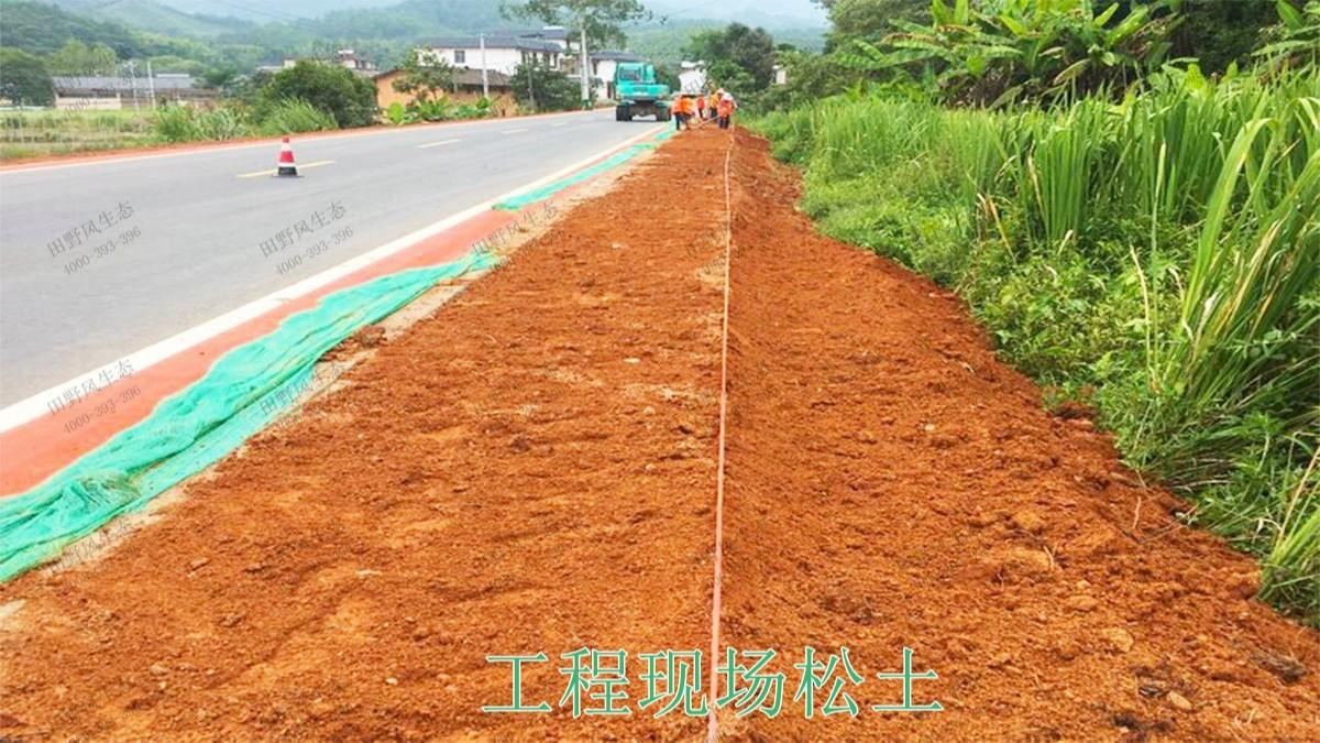 赣州全南公路市政道路工程