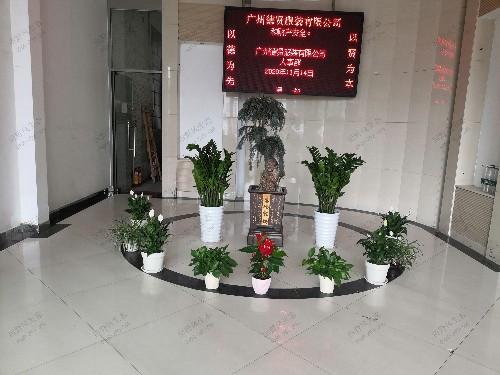 办公楼大堂植物租赁案例解决方案