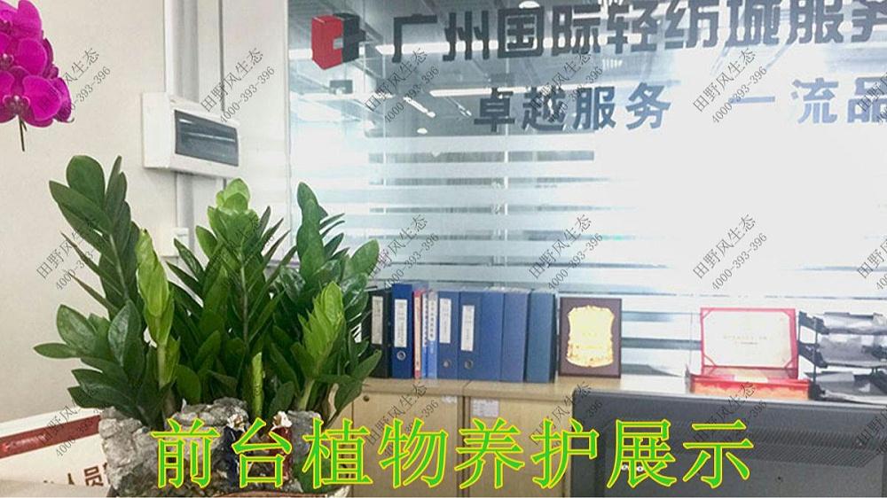 广东国际轻纺城花卉养护案例