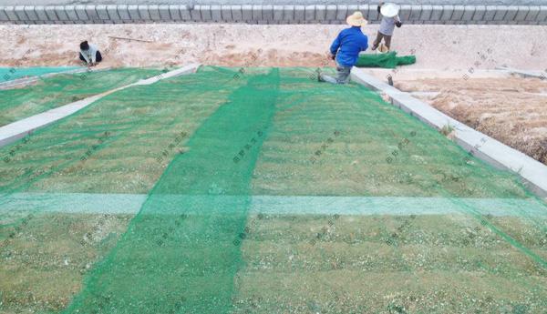 田野风教您边坡防护网的加固应该怎么做?