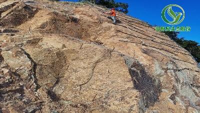 岩质边坡绿化中客土喷播技术的应用