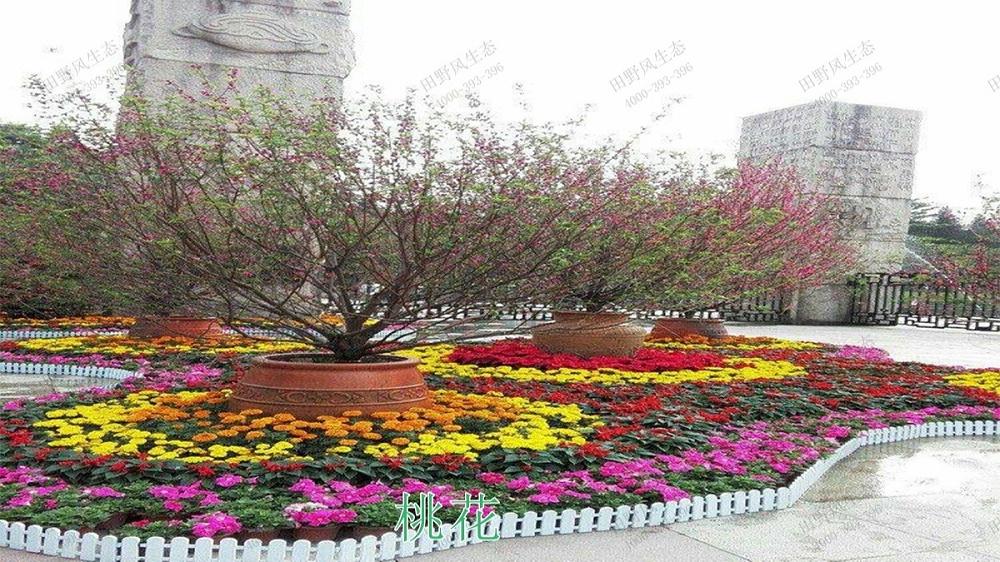 广州花园酒店绿化绿植养护维护