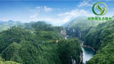 贵州全力推进生态保护与修复,护佑碧水青山