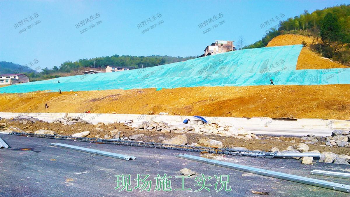 包茂高速高州段高速公路边坡喷播工程