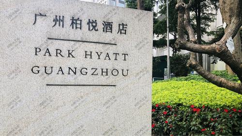 广州柏悦酒店组合花卉租赁方案