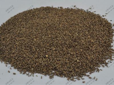 麦秆菊绿化花种子产品介绍