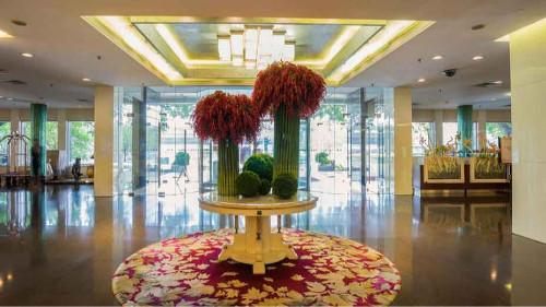 宾馆大厅绿植出租方案