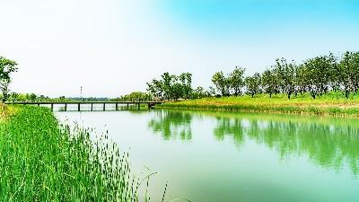 景观生态学,自然保护与生态恢复三者间的关系