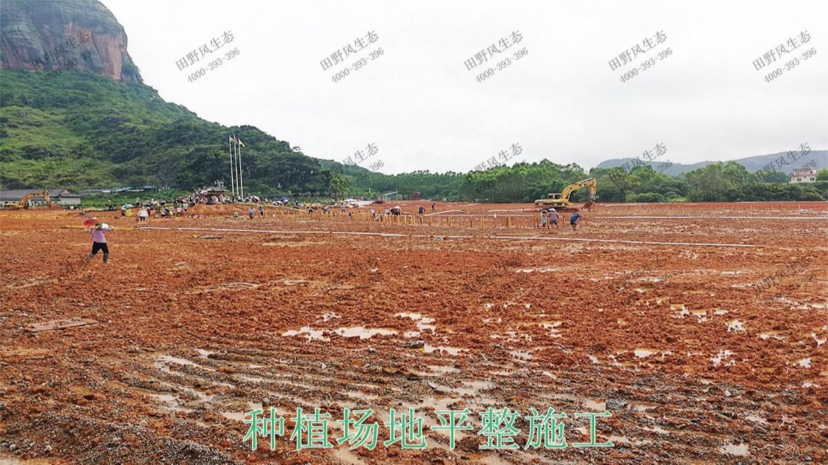 广西北流铜石岭4A风景区花海工程