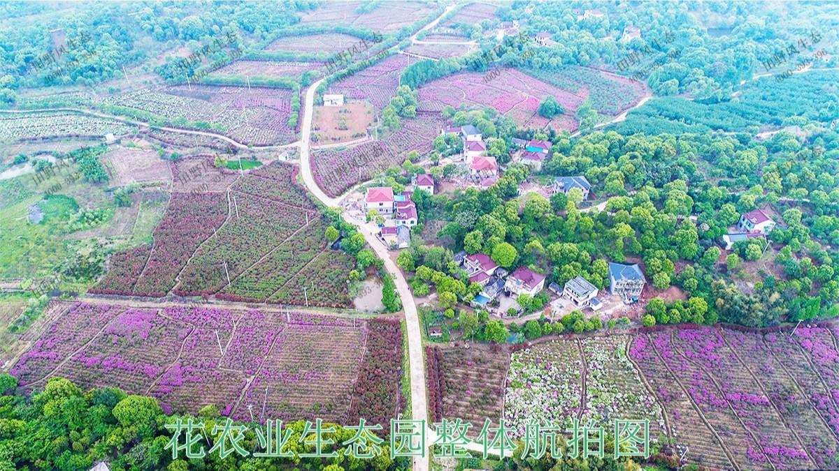 湖北武汉农业生态园