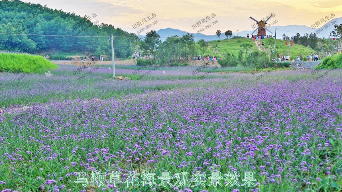 江西赣州美丽乡村景观工程
