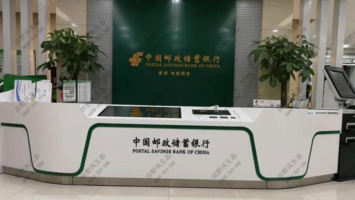 中国邮政储蓄银行绿植租摆,中国邮政储蓄银行绿植租赁