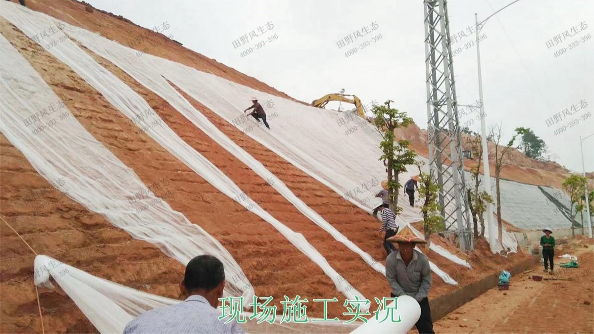 回龙工业园坡面喷播工程