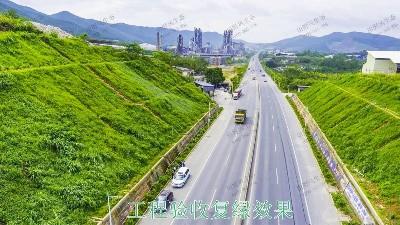连平县工业园区边坡绿化