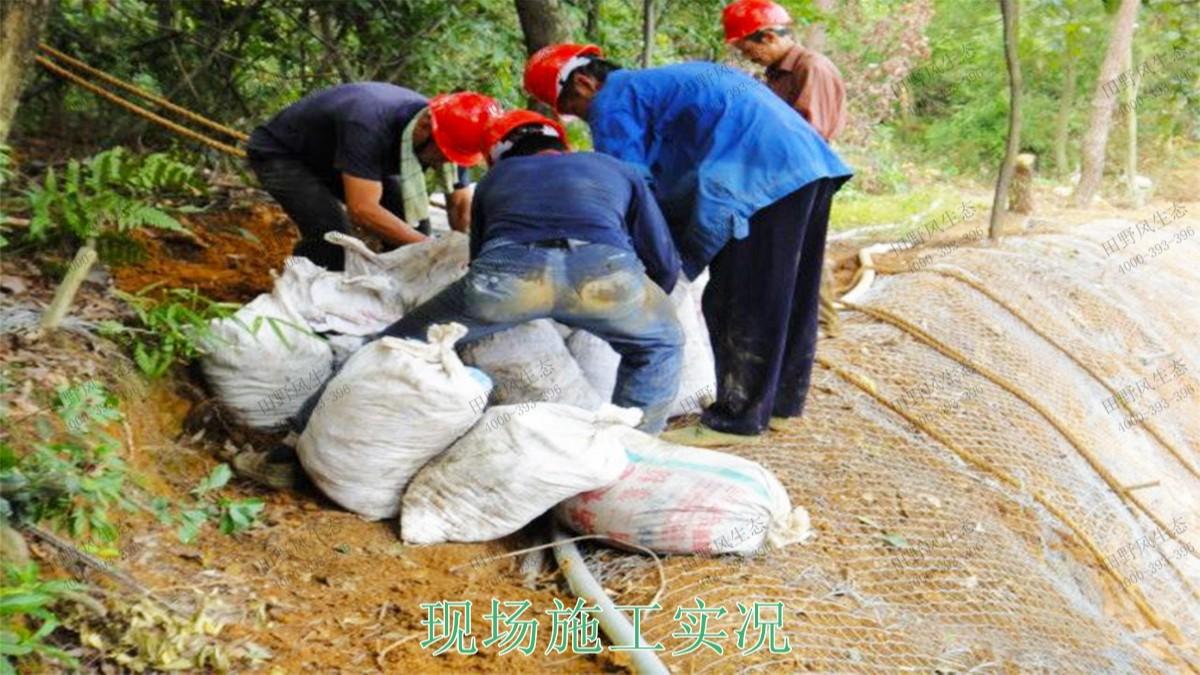 连平县工业园区边坡生态修复工程
