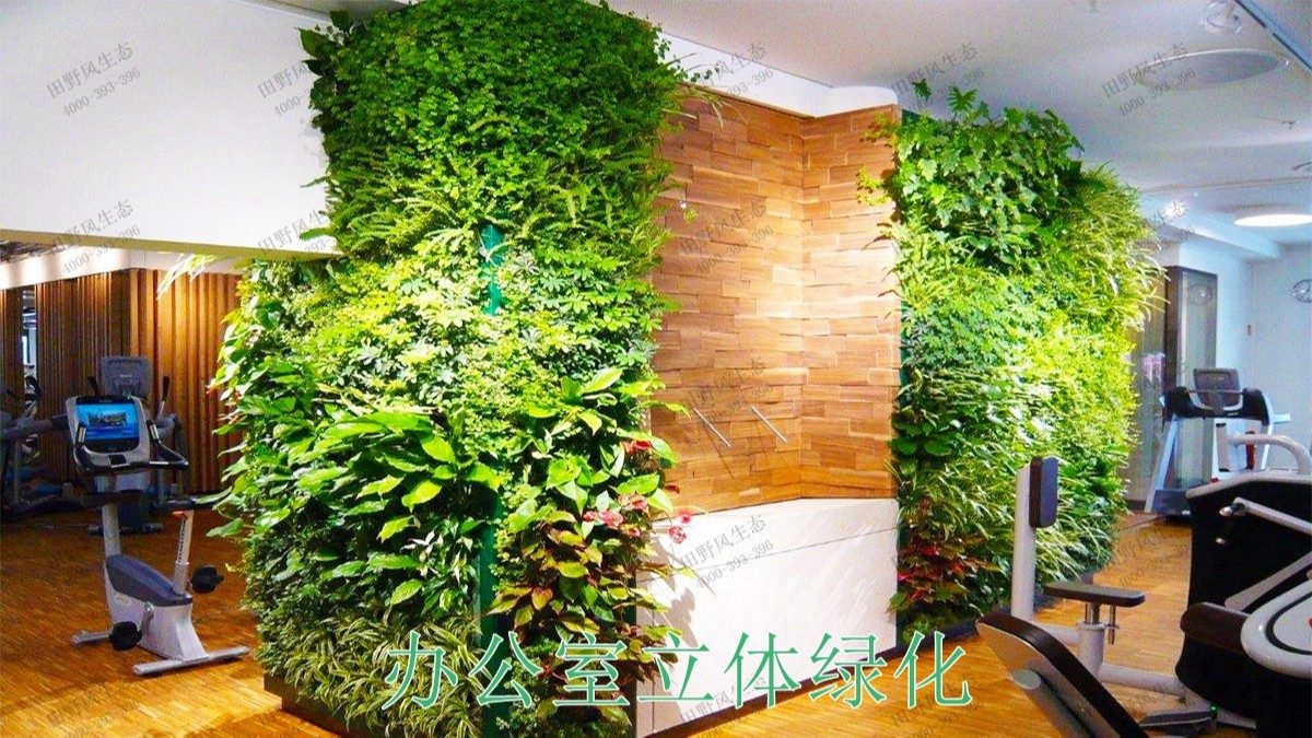 惠州市区园林立体绿化工程