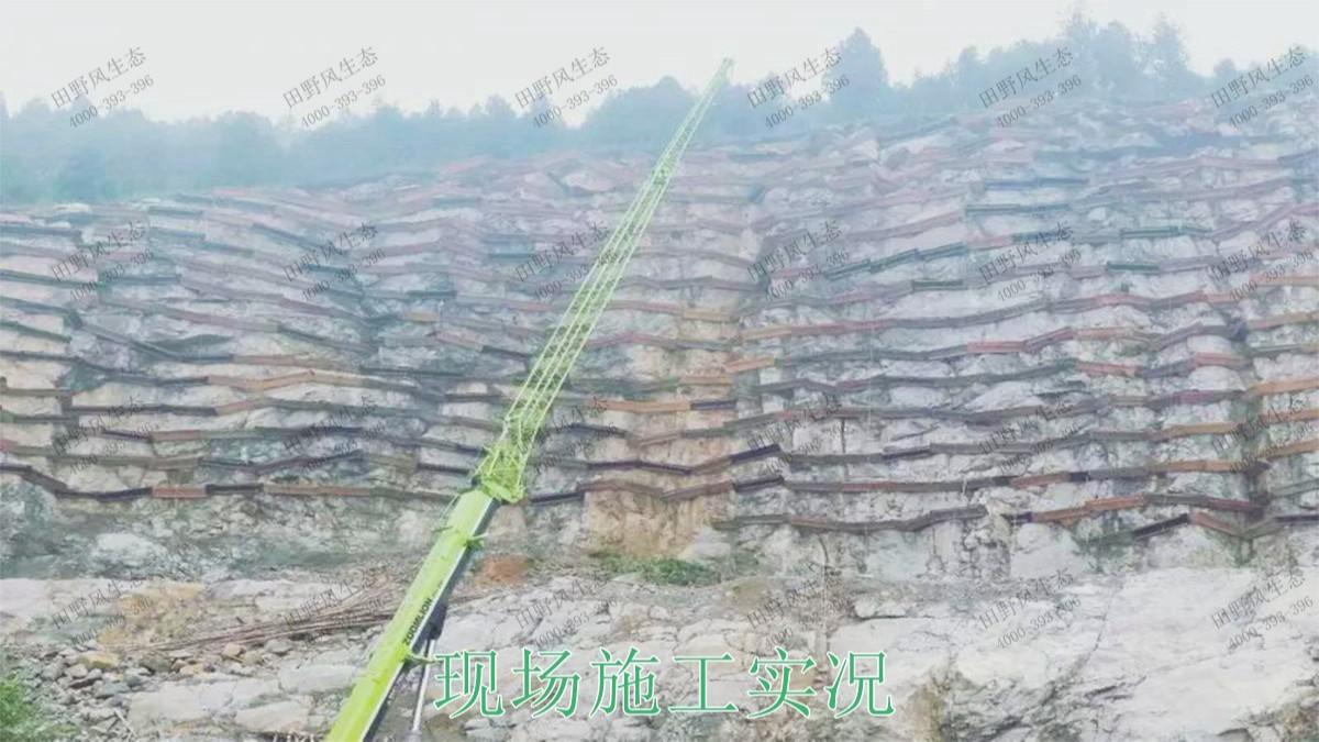 阳山白云岩矿护坡复绿尾矿工程