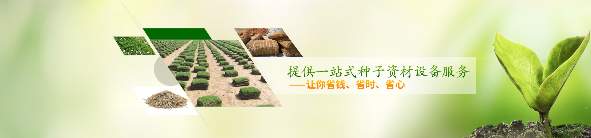 田野风种子资材设备