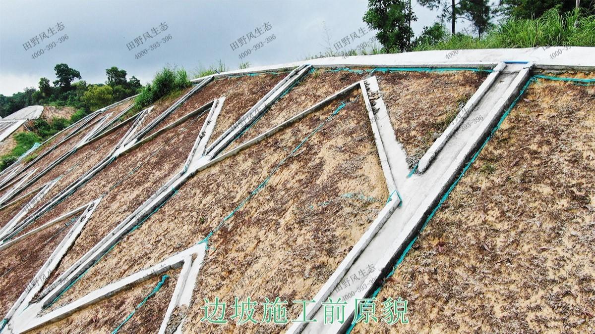 珠三角环线轻铁边坡修复工程